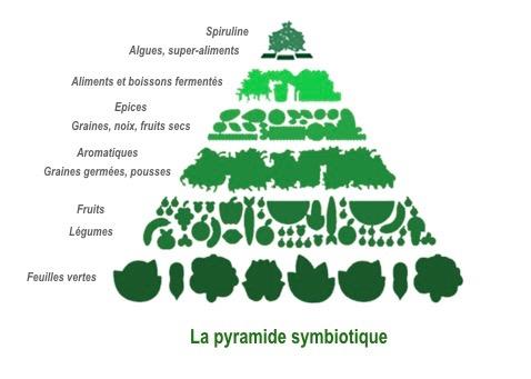La pyramide symbiotique.001 2